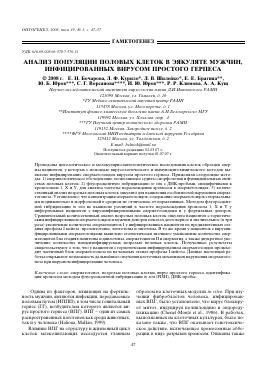 Фертилтные сперматозоиды в эякуляте